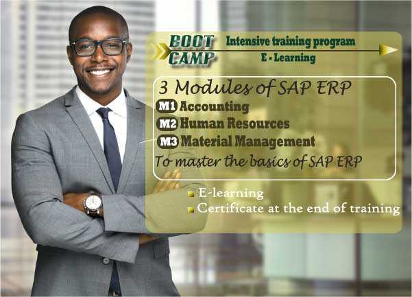 BIBG - SAP ERP Training